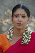 Tollywood Actress Sanghavi Half Saree Photos hot images