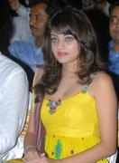 Actress Sneha Ullal Hot Photos cleavage